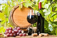 OK Wine Industry Conference - November 11-12